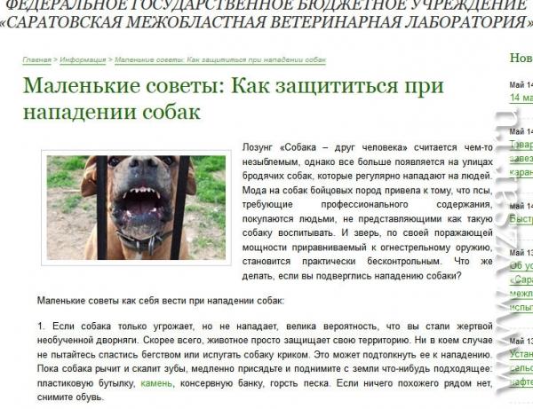 Защита от собаки в случае нападения