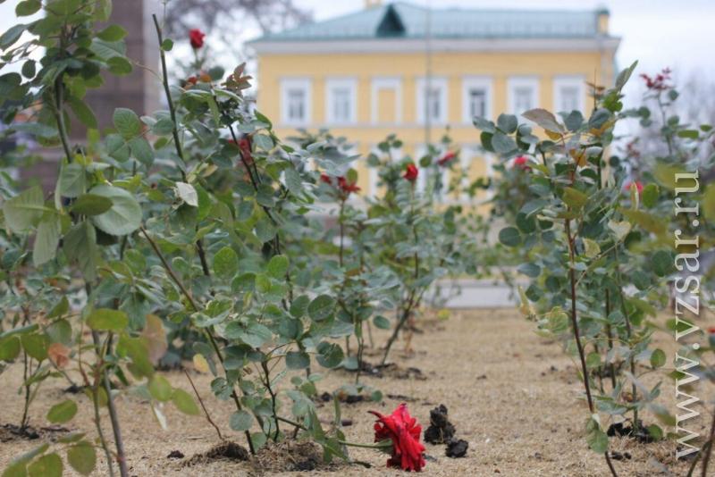 Погода г златоуст челябинской области