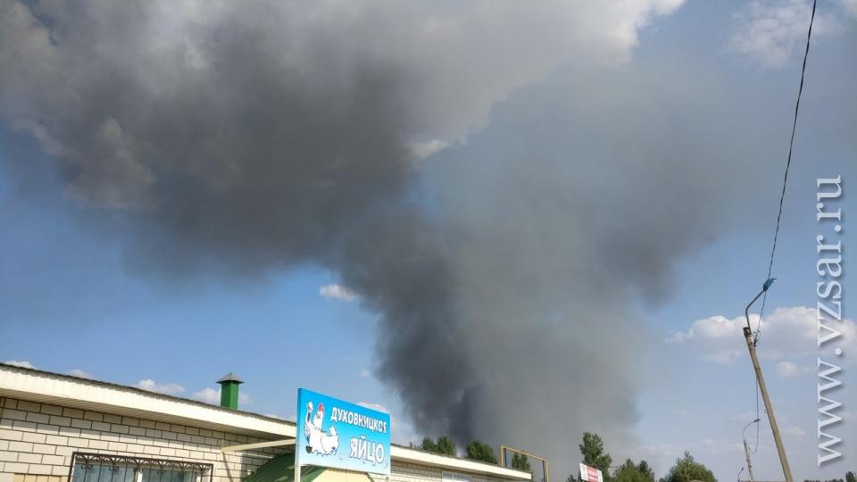 Саратовская область: врайоне Балаковской АЭС тушили пожар