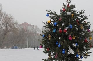 В Детском парке установили и нарядили пятиметровую елку