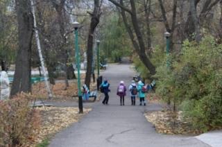В Вольске продолжается работа над проектом полной реконструкции городского парка