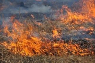 Первый всплеск природных пожаров в регионе ожидают с 20 апреля