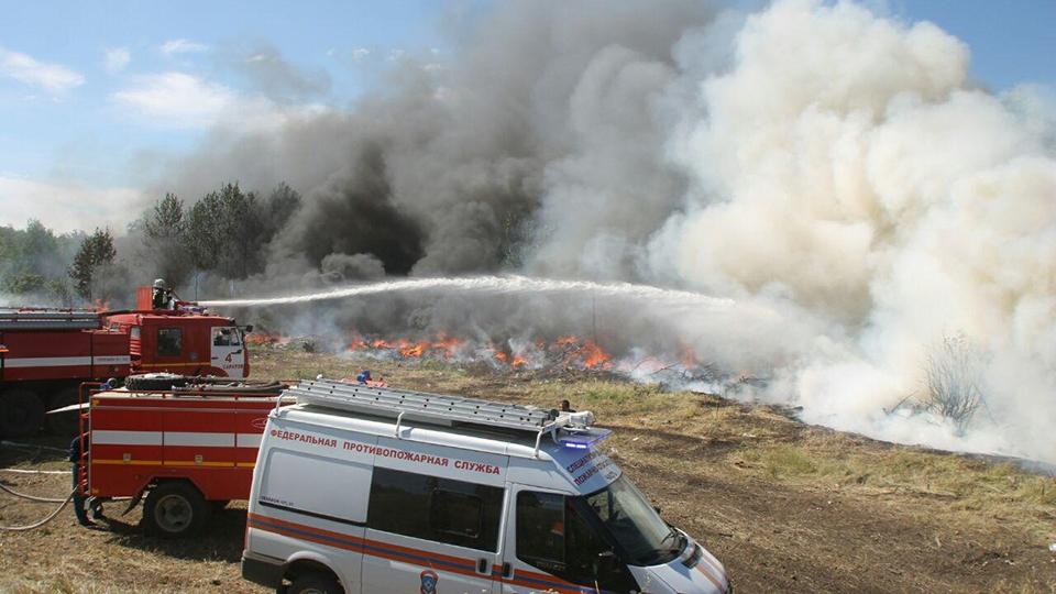 Лесной пожар под Красноармейском тушили практически сто человек