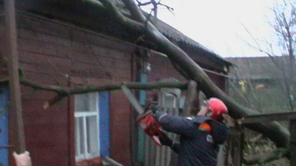 ВАткарске дерево рухнуло накрышу дома