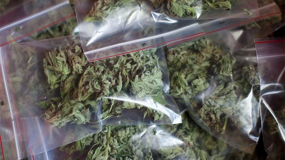 Марихуаны наркокурьер конопли купить из утеплитель