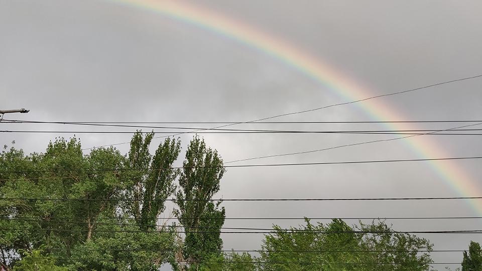 Начало августа в Саратовской области обещает быть ветреным и дождливым. Возможны ливни, грозы и град